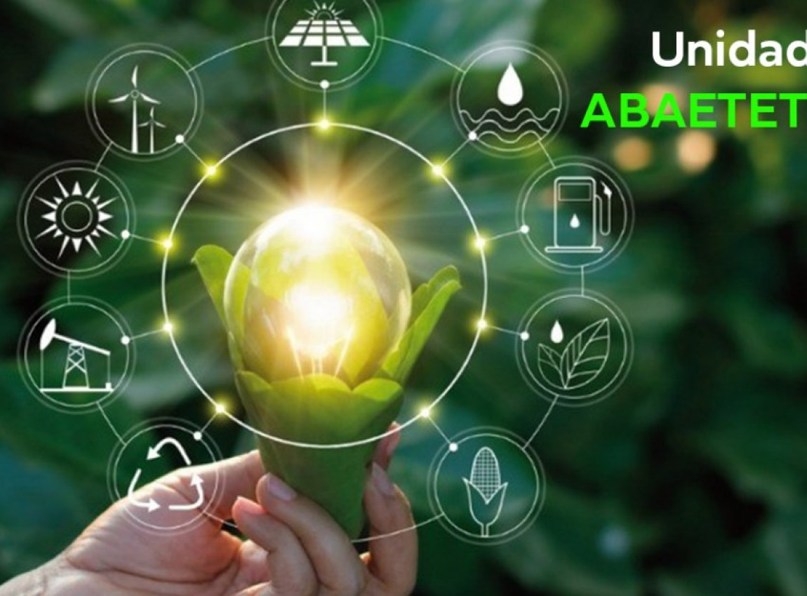 Gestão Ambiental - Abaetetuba - Início Previsto 05/12/2020