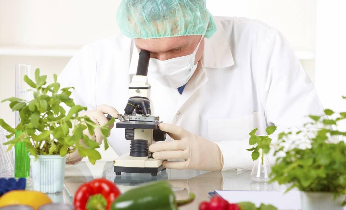 O mercado de trabalho para Tecnologia dos Alimentos